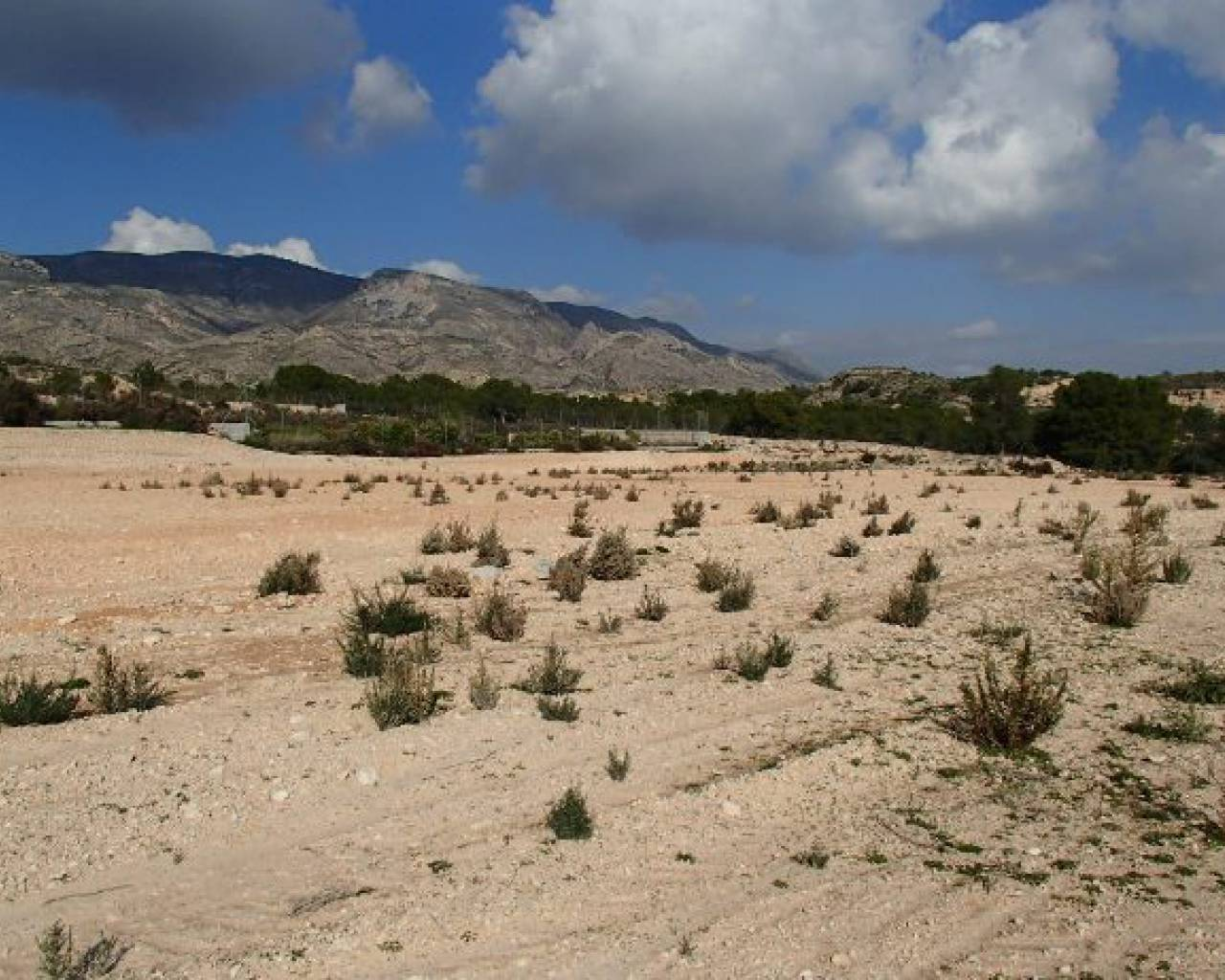 Plot of Land - Venta - Crevillente - Crevillente - Country