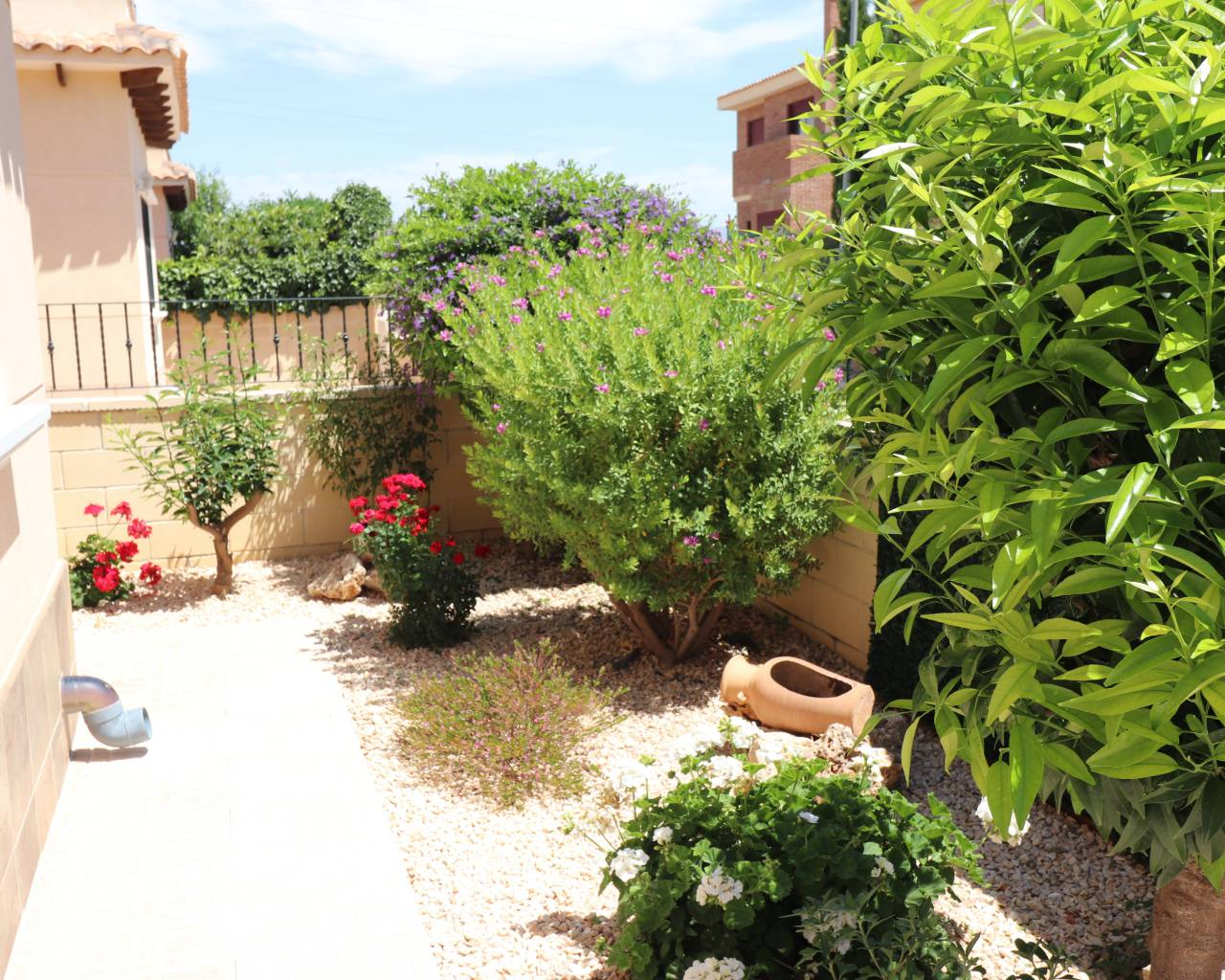 Sale - Detached Villa - Benferri - Benferri - Town